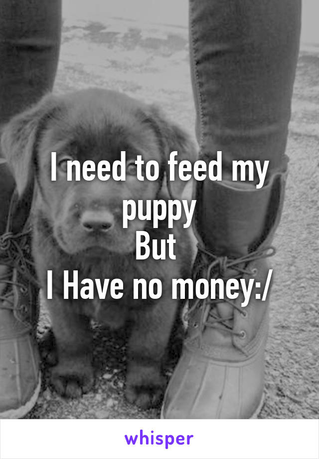 I need to feed my puppy But  I Have no money:/