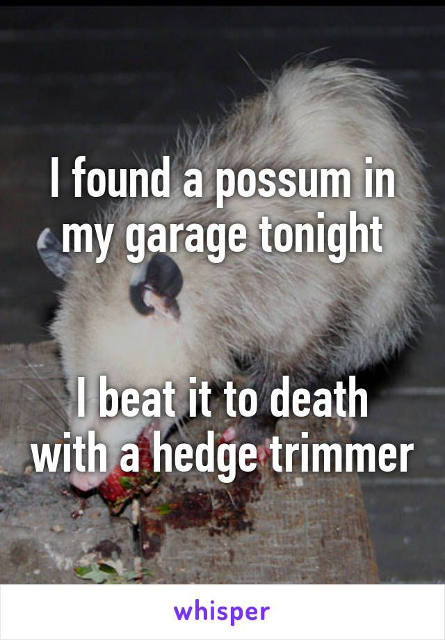 I found a possum in my garage tonight   I beat it to death with a hedge trimmer