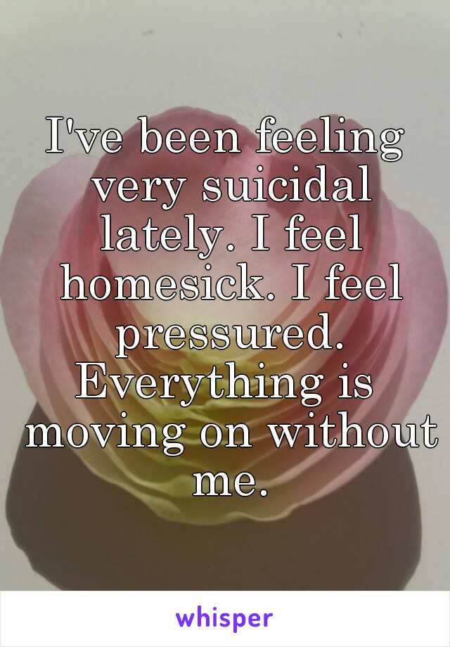 I've been feeling very suicidal lately. I feel homesick. I feel pressured. Everything is moving on without me.