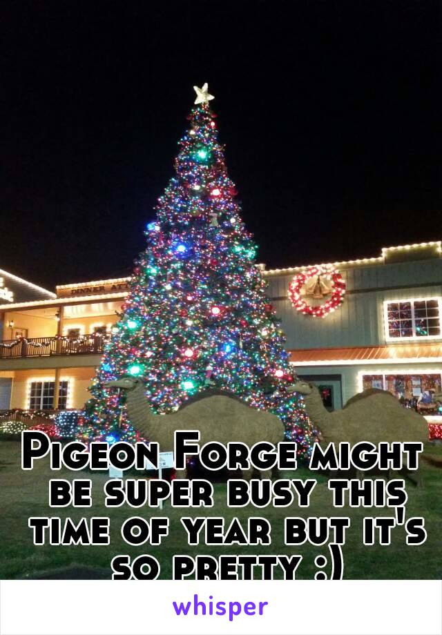 Pigeon Forge might be super busy this time of year but it's so pretty :)