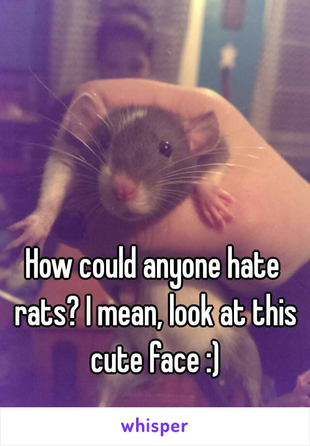 How could anyone hate rats? I mean, look at this cute face :)
