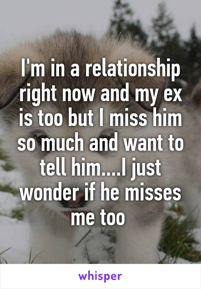 I'm in a relationship right now and my ex is too but I miss him so much and want to tell him....I just wonder if he misses me too