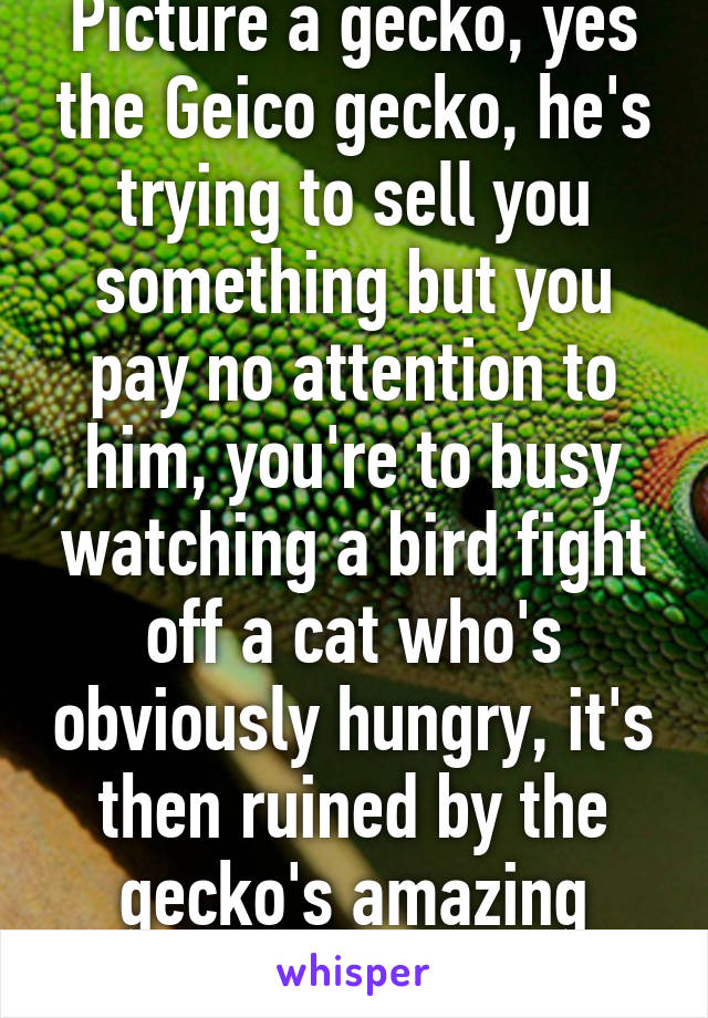 Picture a gecko, yes the Geico gecko, he's trying to sell you something but you pay no attention to him, you're to busy watching a bird fight off a cat who's obviously hungry, it's then ruined by the gecko's amazing bargaining skills