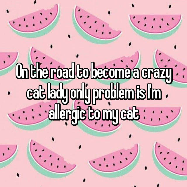 On the road to become a crazy cat lady only problem is I'm allergic to my cat 😿😾