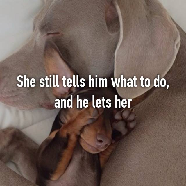 She still tells him what to do, and he lets her