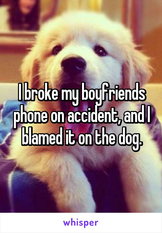 I broke my boyfriends phone on accident, and I blamed it on the dog.