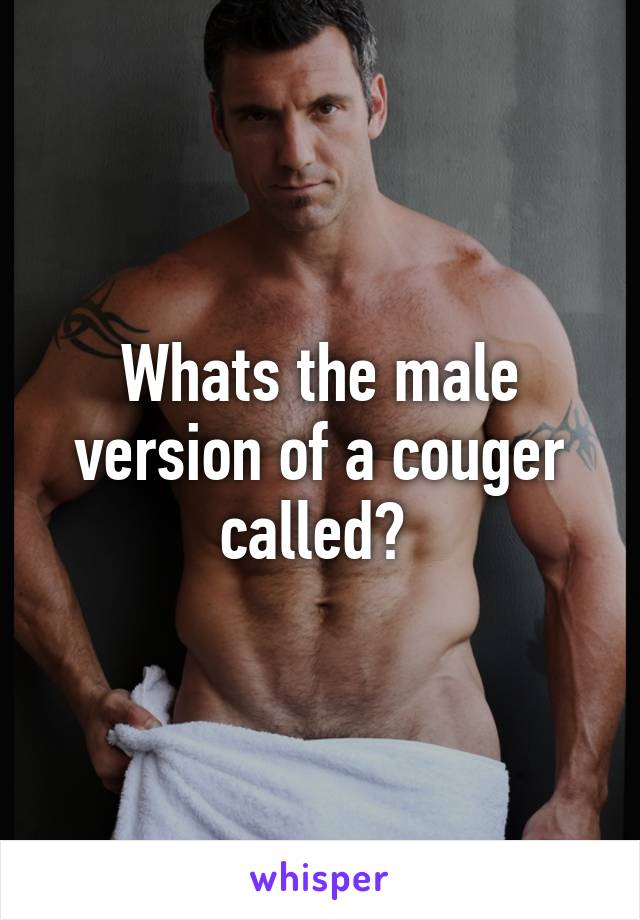 Whats a couger