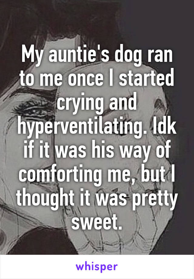 My auntie's dog ran to me once I started crying and hyperventilating. Idk if it was his way of comforting me, but I thought it was pretty sweet.