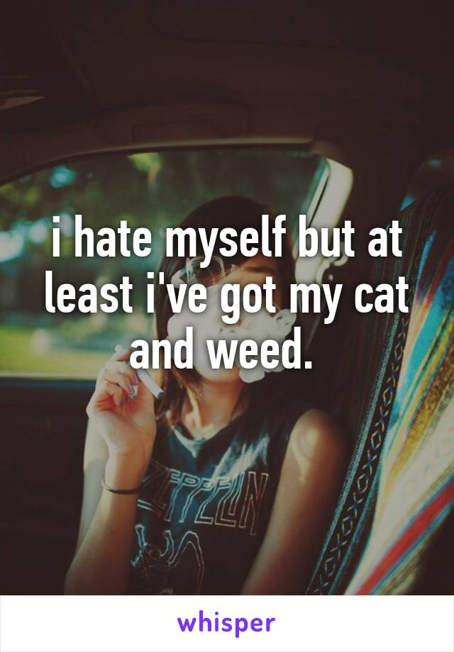i hate myself but at least i've got my cat and weed.
