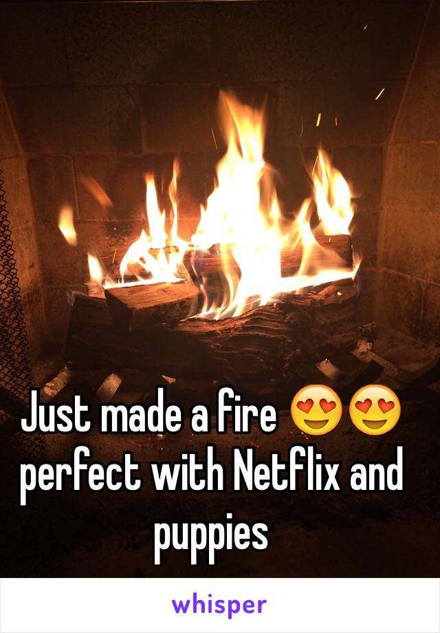 Just made a fire 😍😍 perfect with Netflix and puppies