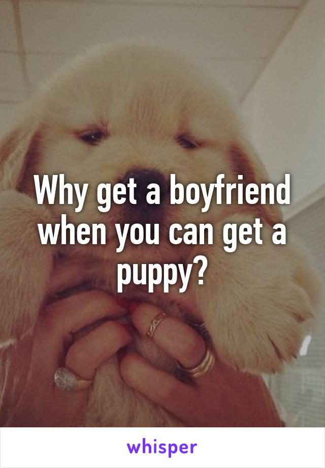 Why get a boyfriend when you can get a puppy?