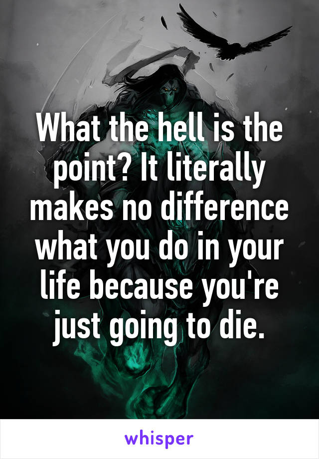 What the hell is the point? It literally makes no difference what you do in your life because you're just going to die.