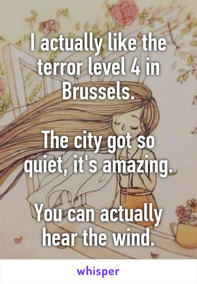 I actually like the terror level 4 in Brussels.  The city got so quiet, it's amazing.  You can actually hear the wind.