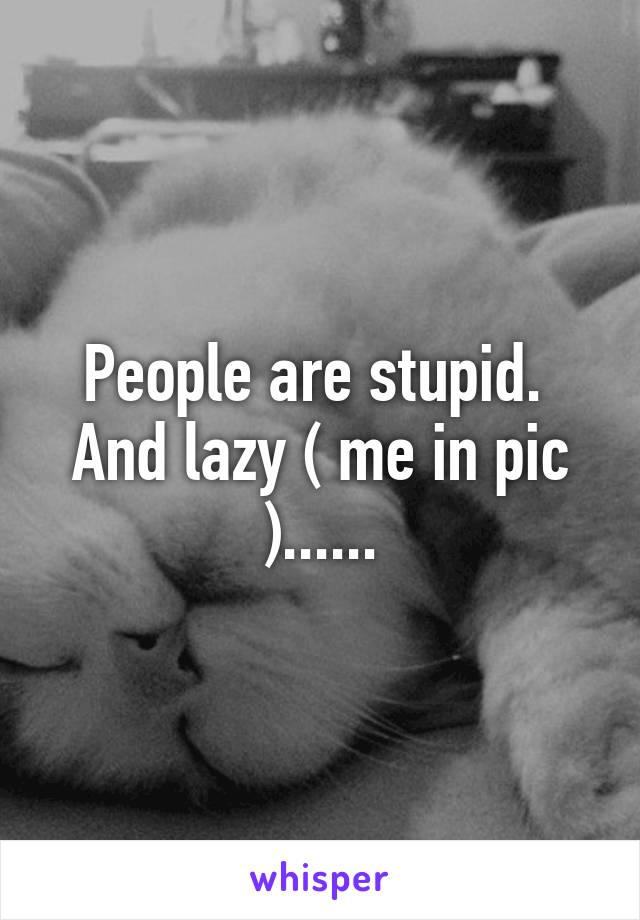 People are stupid.  And lazy ( me in pic )......