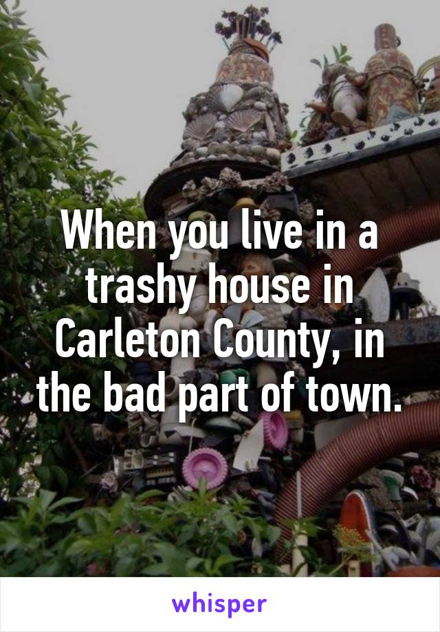 When you live in a trashy house in Carleton County, in the bad part of town.