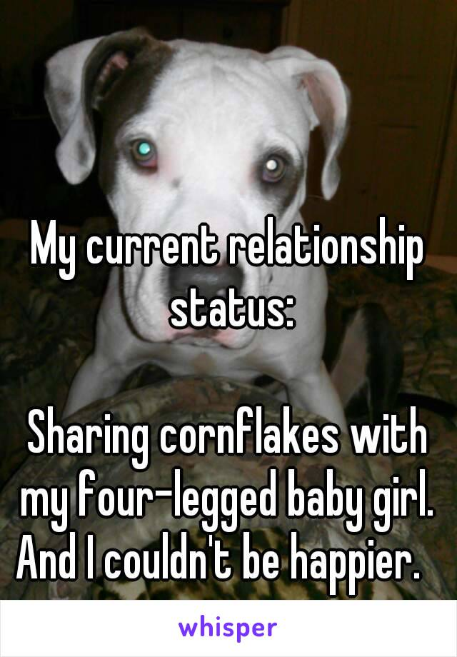 My current relationship status:   Sharing cornflakes with my four-legged baby girl.  And I couldn't be happier.