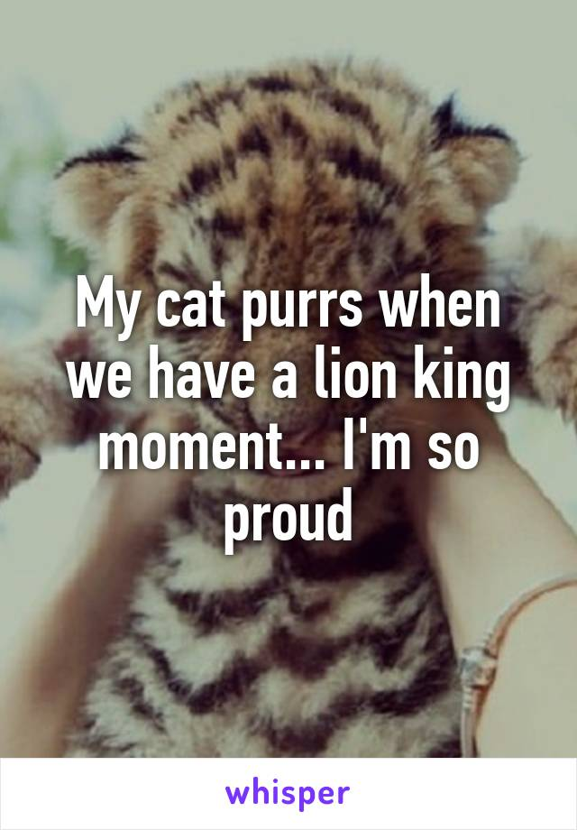 My cat purrs when we have a lion king moment... I'm so proud