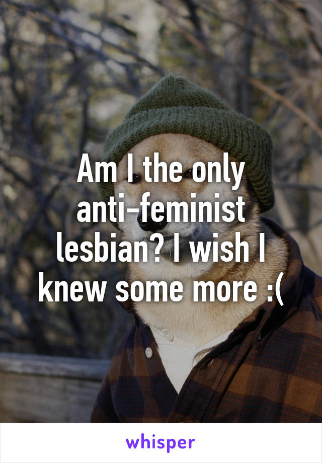 Am I the only anti-feminist lesbian? I wish I knew some more :(