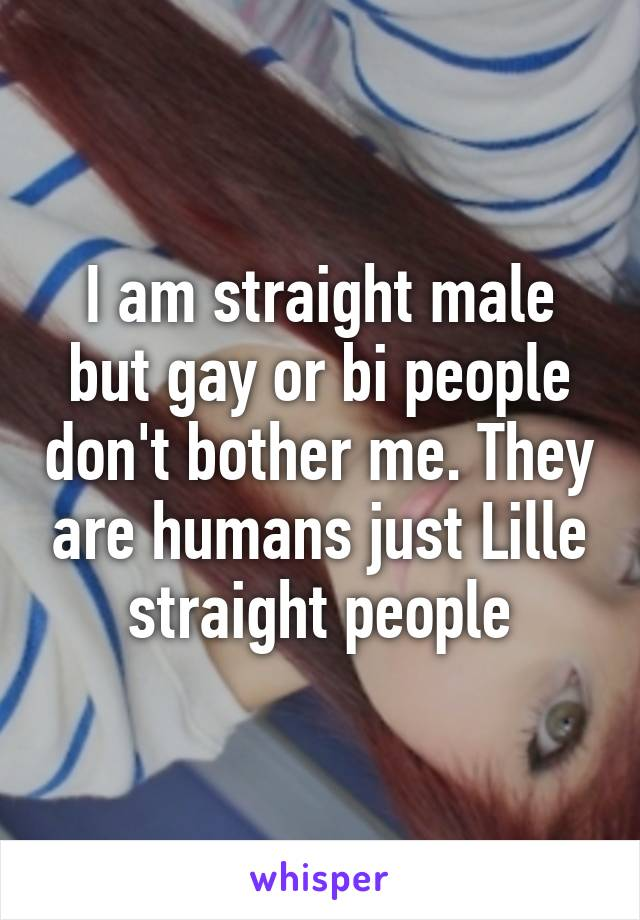 I am straight male but gay or bi people don't bother me. They are humans just Lille straight people
