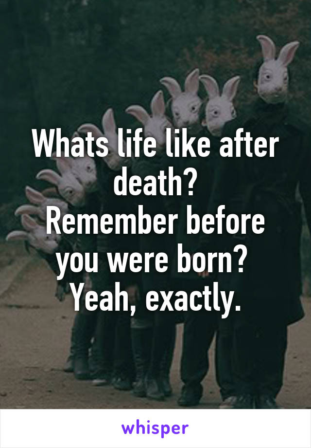 Whats life like after death? Remember before you were born?  Yeah, exactly.