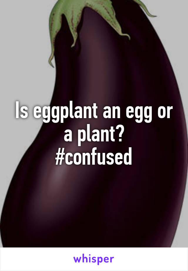 Is eggplant an egg or a plant? #confused