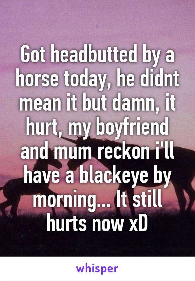 Got headbutted by a horse today, he didnt mean it but damn, it hurt, my boyfriend and mum reckon i'll have a blackeye by morning... It still hurts now xD
