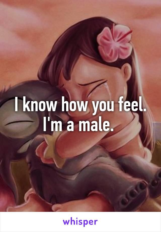 I know how you feel. I'm a male.