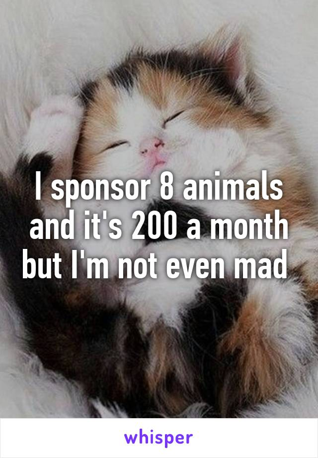 I sponsor 8 animals and it's 200 a month but I'm not even mad