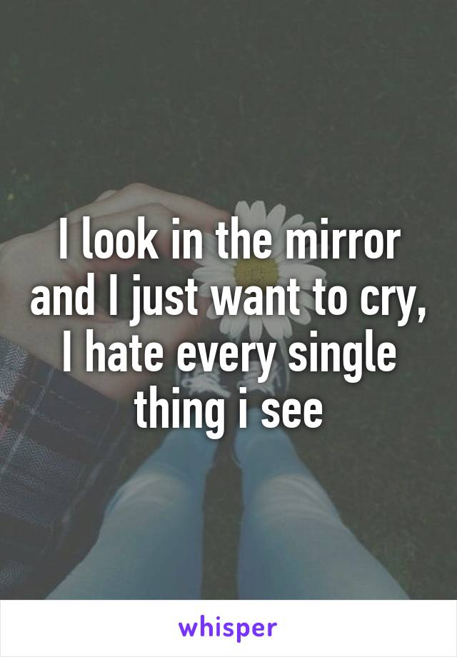 I look in the mirror and I just want to cry, I hate every single thing i see