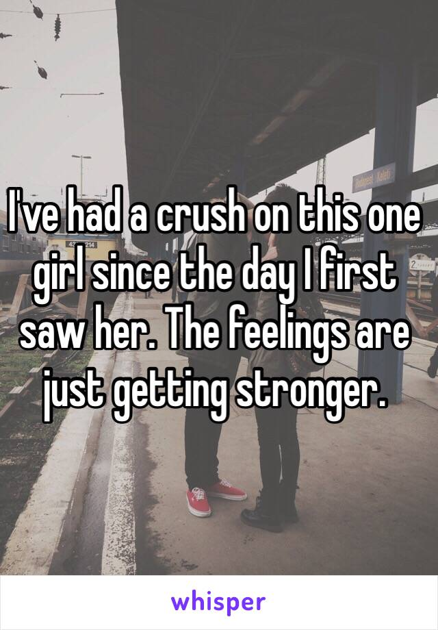 I've had a crush on this one girl since the day I first saw her. The feelings are just getting stronger.