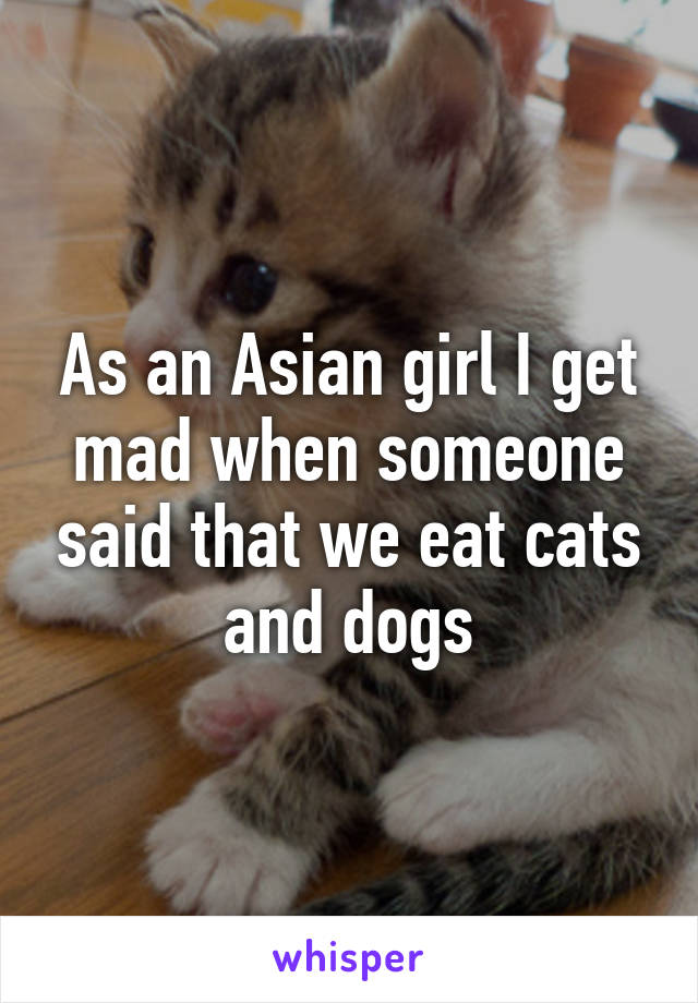 As an Asian girl I get mad when someone said that we eat cats and dogs