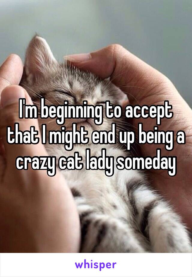I'm beginning to accept that I might end up being a crazy cat lady someday