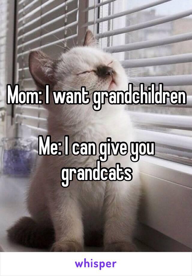 Mom: I want grandchildren  Me: I can give you grandcats