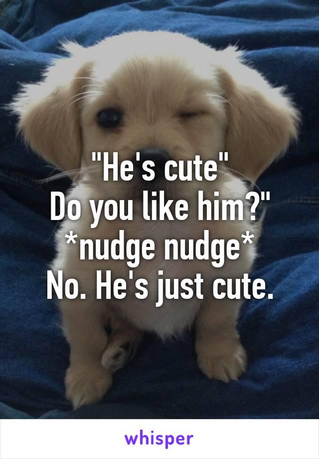 """He's cute"" Do you like him?"" *nudge nudge* No. He's just cute."