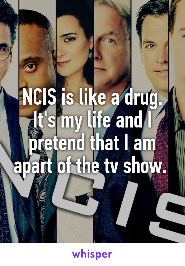 NCIS is like a drug. It's my life and I pretend that I am apart of the tv show.