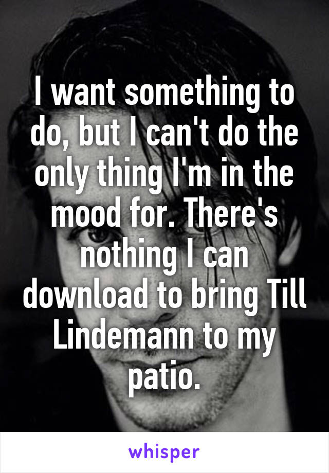 I want something to do, but I can't do the only thing I'm in the mood for. There's nothing I can download to bring Till Lindemann to my patio.