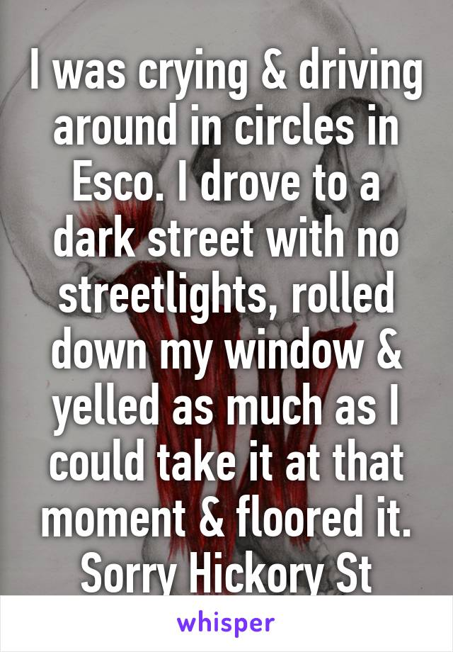 I was crying & driving around in circles in Esco. I drove to a dark street with no streetlights, rolled down my window & yelled as much as I could take it at that moment & floored it. Sorry Hickory St