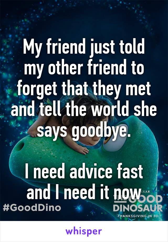 My friend just told my other friend to forget that they met and tell the world she says goodbye.  I need advice fast and I need it now