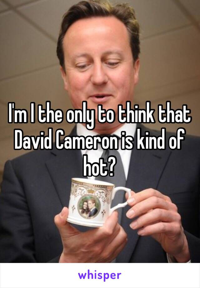 I'm I the only to think that David Cameron is kind of hot?