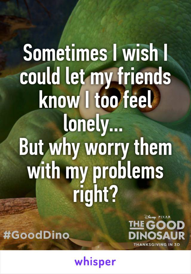 Sometimes I wish I could let my friends know I too feel lonely...  But why worry them with my problems right?