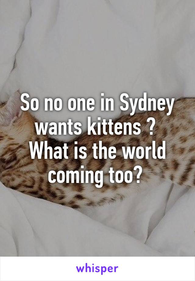 So no one in Sydney wants kittens ?  What is the world coming too?