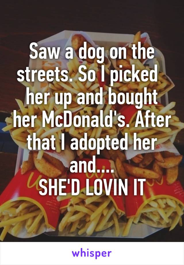 Saw a dog on the streets. So I picked   her up and bought her McDonald's. After that I adopted her and.... SHE'D LOVIN IT