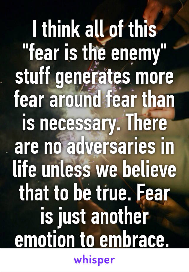 "I think all of this ""fear is the enemy"" stuff generates more fear around fear than is necessary. There are no adversaries in life unless we believe that to be true. Fear is just another emotion to embrace."
