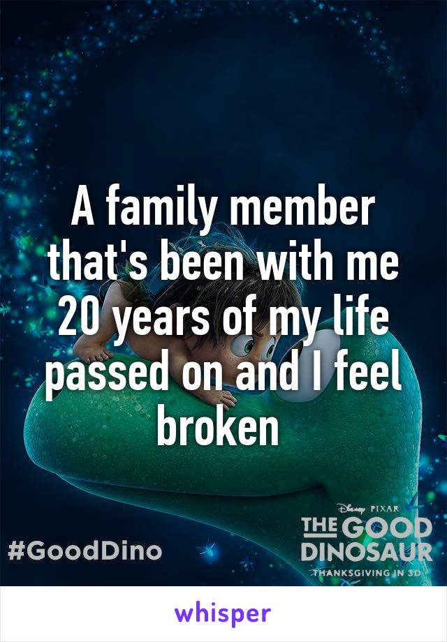 A family member that's been with me 20 years of my life passed on and I feel broken