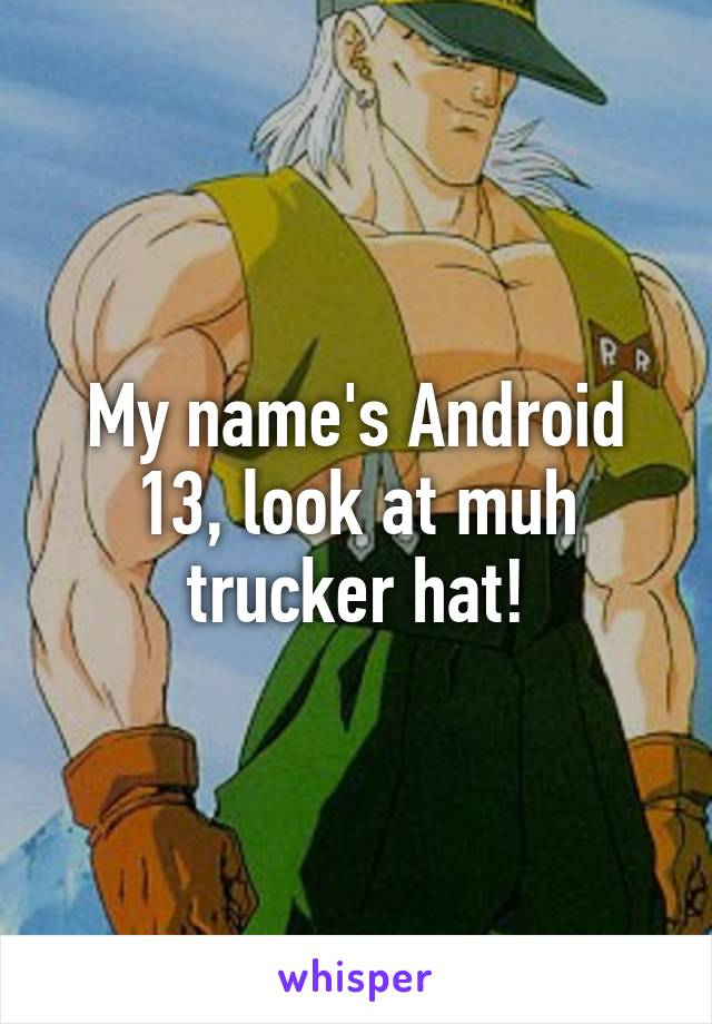 My name's Android 13, look at muh trucker hat!