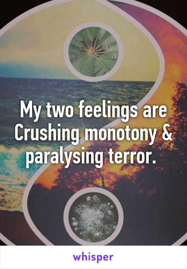 My two feelings are Crushing monotony & paralysing terror.
