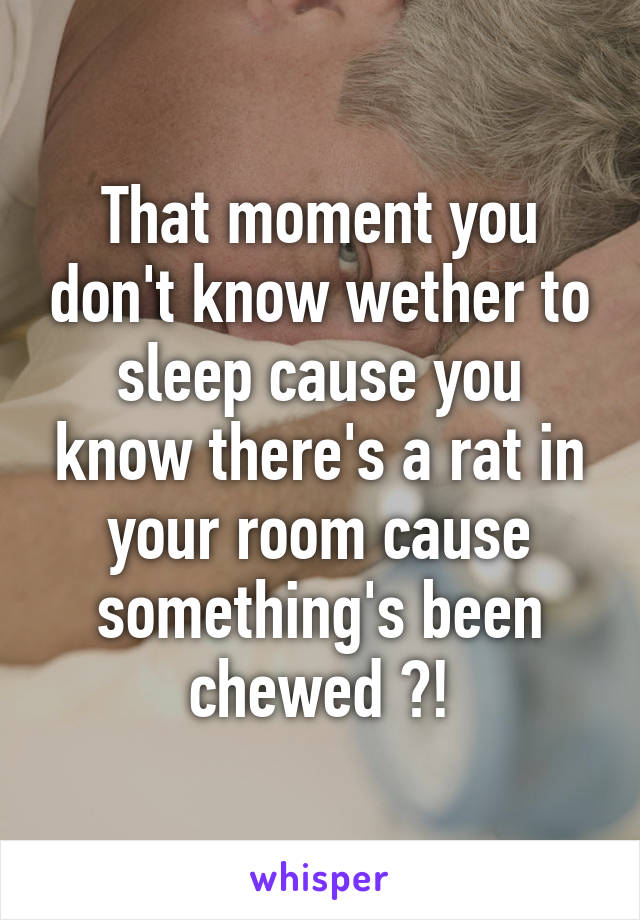 That moment you don't know wether to sleep cause you know there's a rat in your room cause something's been chewed ?!