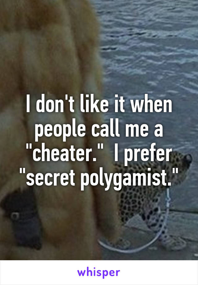 "I don't like it when people call me a ""cheater.""  I prefer ""secret polygamist."""