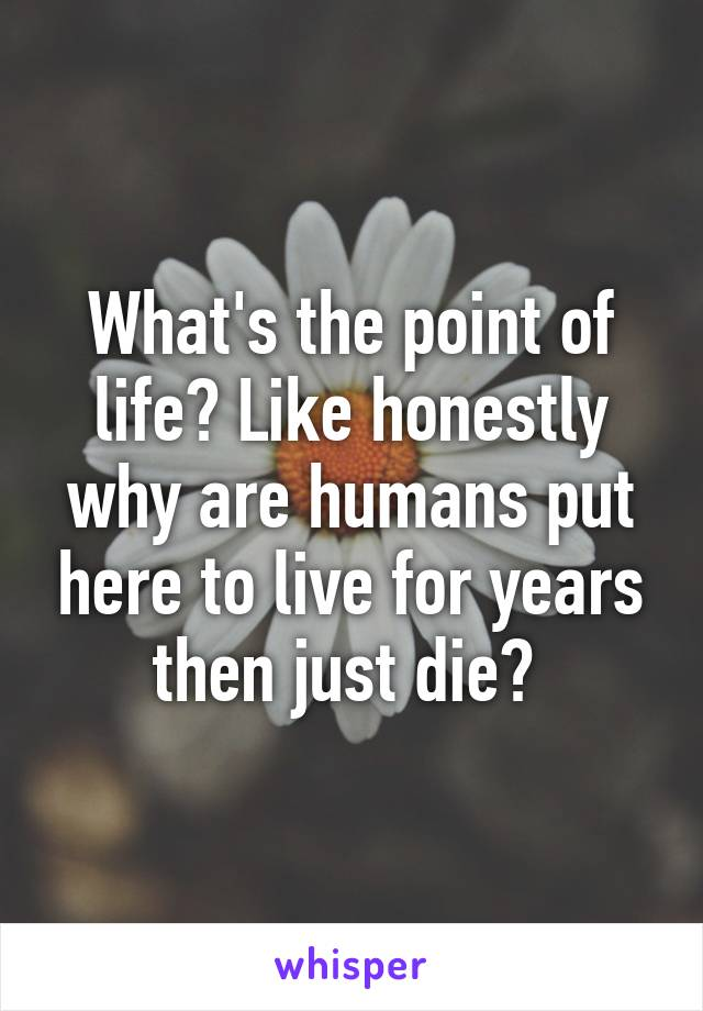 What's the point of life? Like honestly why are humans put here to live for years then just die?