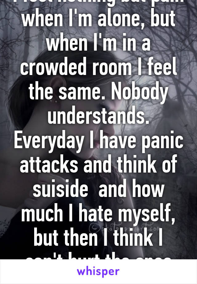 I feel nothing but pain when I'm alone, but when I'm in a crowded room I feel the same. Nobody understands. Everyday I have panic attacks and think of suiside  and how much I hate myself, but then I think I can't hurt the ones who truly care........